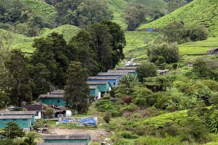 Workers' accomodation on the Sungai Palas Boh Tea Estate in the Cameron Highlands, Malaysia.