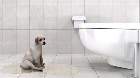 bathroom with dog
