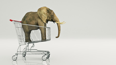 Cute baby elephant in shopping cart isolated on white background. 3D rendering