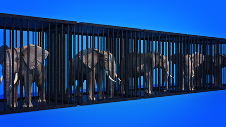 captive: Elephant in cage. 3d rendering Stock Photo