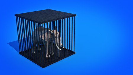 Elephant in cage. 3d rendering Stock Photo