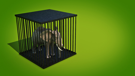 wire mesh: Elephant in cage. 3d rendering Stock Photo