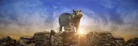 hippopotamus at sunset. 3d render
