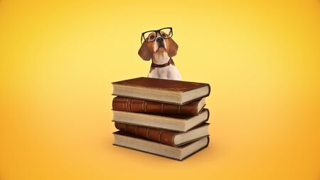 dog with glasses and books. 3d render Standard-Bild