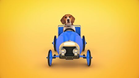 dog driving toy car. 3d render 版權商用圖片