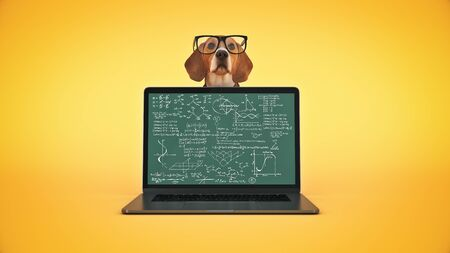 business concept pet dog using laptop computer. 3d render