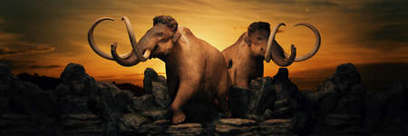 mammoth at sunset. 3d render