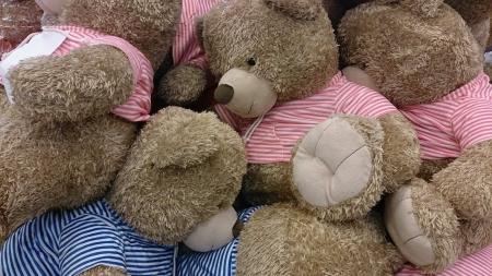teddy bears: Osos de peluche Peluches
