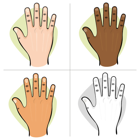 institutional: Illustration is part of the human body ethnicities hand open top view. Ideal for educational materials and institutional
