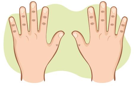 Dit deel van het menselijk lichaam handen paar open bovenaanzicht. Ideaal voor educatief materiaal en institutionele