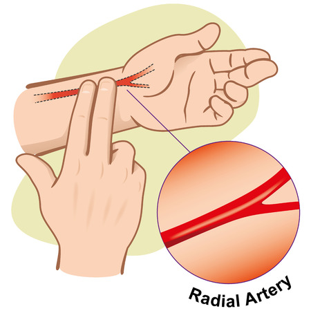 at first: First Aid illustration person measuring pulse by Radial Artery. Ideal for informative and medical guides catalogs.