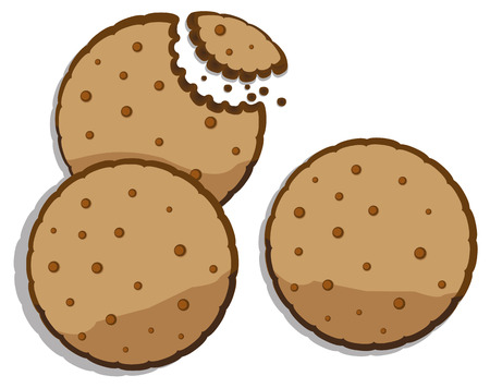 biscuit: Food illustration cookie chocolate, sweet. Ideal for catalogs, informative and institutional materials