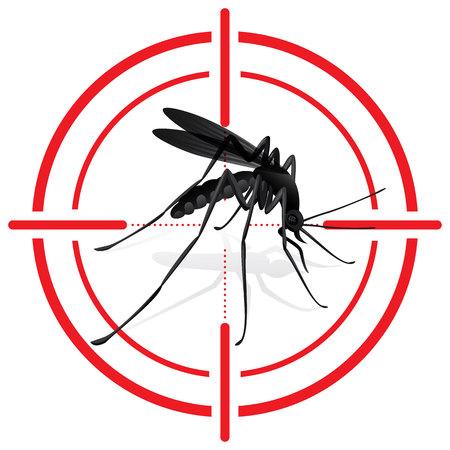 insecto: Señalización, mosquitos con destino Mosquito. lugares de interés turístico de la señal. Ideal para el saneamiento informativo e institucional y la atención relacionada Vectores