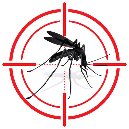 Signaling, mosquitoes with Mosquito target. sights signal. Ideal for informational and institutional sanitation and related care Фото со стока - 50040529