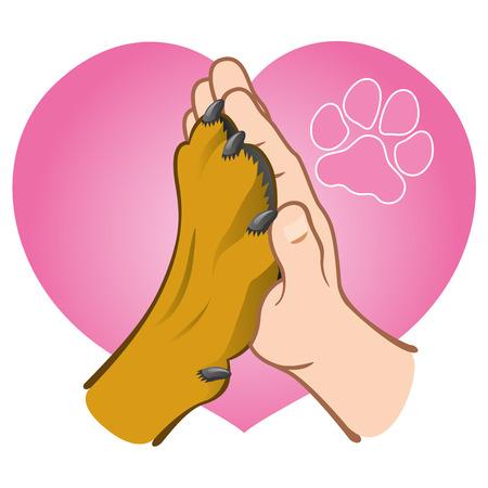 Illustration main humaine tenant une patte, coeur, de race blanche. matériaux institutionnels Idéal pour catalogues, informatifs et vétérinaires