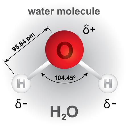 Illustration, die Struktur und Zusammensetzung des Wassermoleküls Chemikalie. ideal für pädagogische Bücher und institutionelle Materialien Standard-Bild - 51237706