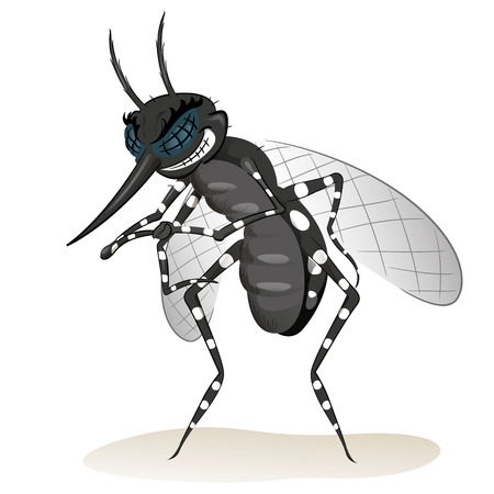 dengue fever: Nature, mosquitoes black stilt disease transmitter. Ideal for informational and institutional sanitation and related care
