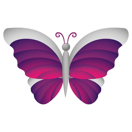 institutional: Illustration is an insect butterfly nature, lilac and gray. Ideal for educational and institutional materials