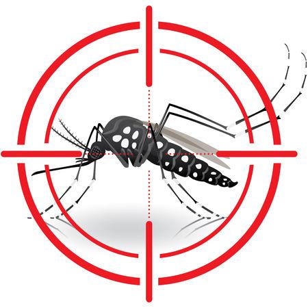 Natura, komary Aedes aegypti z docelowymi palach. Celowniki zasygnalizować. Idealny do informacyjnym i instytucjonalnej związanej z urządzeń sanitarnych i opieki