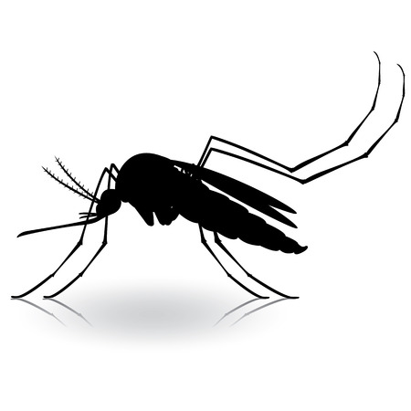 institutional: Nature, silhouette Mosquito stilt. Ideal for informational and institutional related sanitation and care