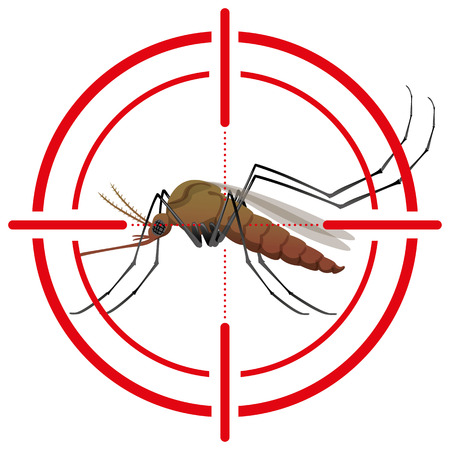 institutional: Nature, mosquitoes with stilt target. sights signal. Ideal for informational and institutional related sanitation and care Illustration