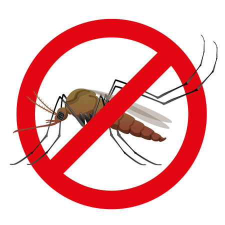 dengue: Nature, mosquitoes with stilt prohibited sign. Ideal for informational and institutional related sanitation and care