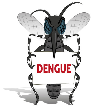 yellow fever: Aedes aegypti mosquito stilt holding poster Dengue. Ideal for informational and institutional related sanitation and care
