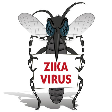 Aedes aegypti mosquito stilt holding poster Zika virus. Ideal for informational and institutional related sanitation and care Illustration