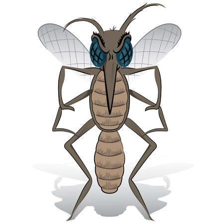 infestation: Mosquito mascot stilt front. Ideal for informational and institutional related sanitation and care