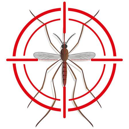 contaminacion del agua: Naturaleza, zanco Mosquito con la señal de la vista o de destino, vista desde arriba. Ideal para el saneamiento y la atención relacionada con el informativo e institucional