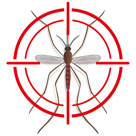 stilt: Nature, Mosquito stilt with sight signal or target, top view. Ideal for informational and institutional related sanitation and care