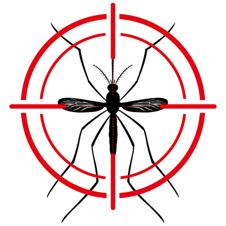 female animal: Nature, Mosquito silhouette stilt with sight signal or target, top view. Ideal for informational and institutional related sanitation and care