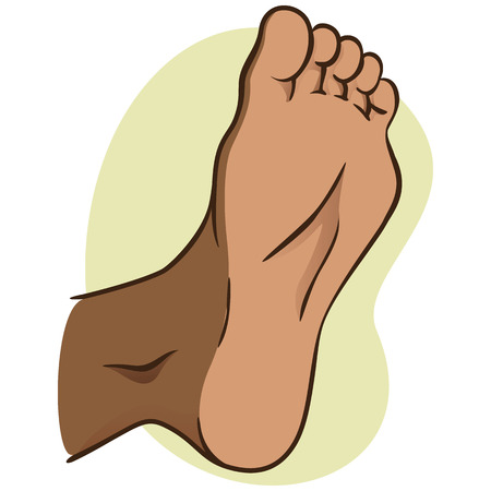 woman foot: body part illustration, plant or sole of the foot. African descent. Ideal for catalogs, informational and institutional materials Illustration