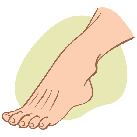 Individual human foot. caucasian. Ideal for catalogs, informational and institutional guides
