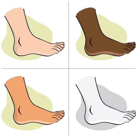 podiatrist: Person, side view human foot. ethnic. Ideal for catalogs, informational and institutional guides