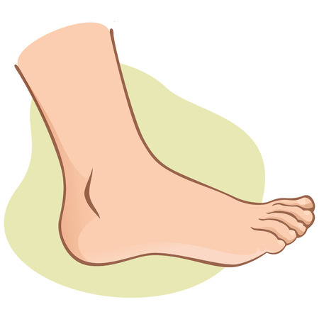 footing: Person, side view human foot. caucasian. Ideal for catalogs, informational and institutional guides
