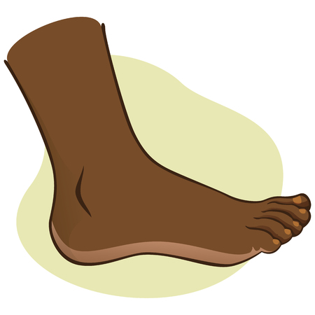 toenail: Person, side view human foot. African-descendant. Ideal for catalogs, informational and institutional guides Illustration