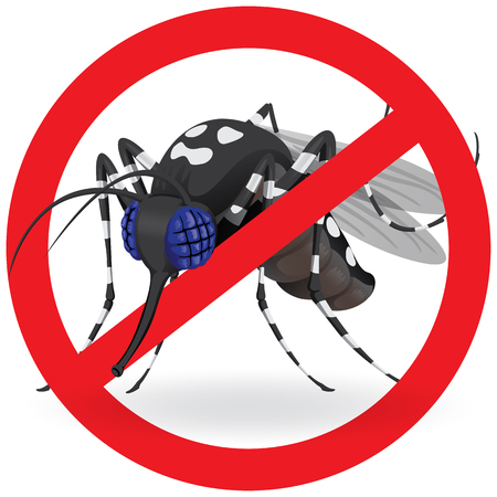 water repellent: Nature, Aedes aegypti mosquitoes with stilt prohibited signal side. Ideal for informational and institutional related sanitation and care