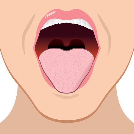 close illustration of a person with an open mouth. Ideal for health and Educational Institutions Stock fotó - 65646267