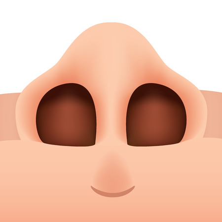 ornithologist: Close-up illustration of a human nose seen from below. Ideal for biology and anatomy materials