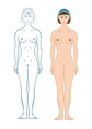 Female body silhouette woman