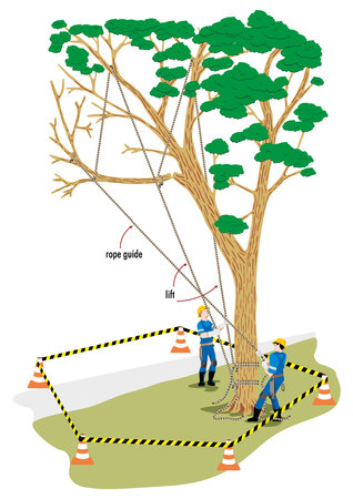 Working operation pruning tree