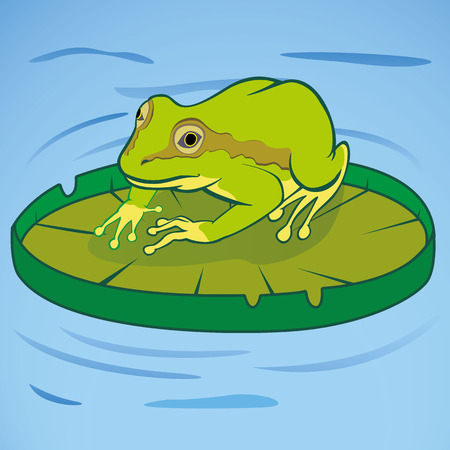 Illustration of a frog on the victoria regia floating in water. Ideal for educational and cultural materials