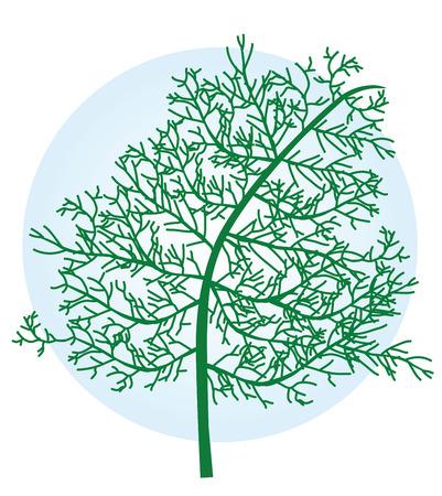 crocket: herb sweet Illustration