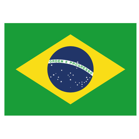 Illustration flag of Brazil. Ideal for catalogs of institutional materials and geography 向量圖像