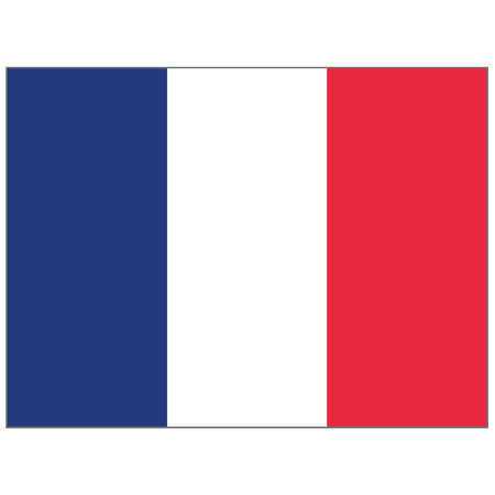 Illustration flag of France. Ideal for catalogs of institutional materials and geography