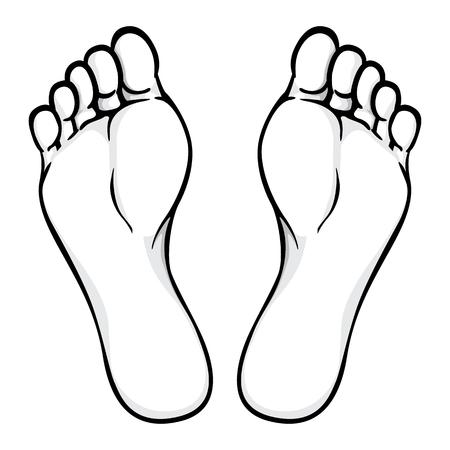 Illustration d'une partie du corps, de la plante ou de la plante du pied, noir blanc. Idéal pour les catalogues, les informations et le matériel institutionnel