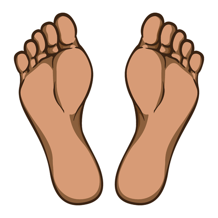 Illustration of body part, plant or sole of foot, afro descent. Ideal for catalogs, information and institutional material