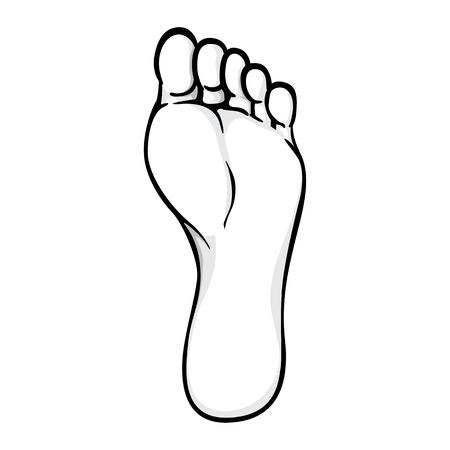 Illustration of body part, sole or sole of right foot, black white. Ideal for catalogs, information and institutional material
