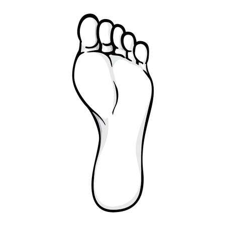 Abbildung des Körperteils, der Sohle oder der Sohle des rechten Fußes, schwarz weiß. Ideal für Kataloge, Informationen und institutionelles Material